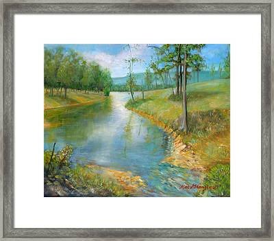 Cattle Cooling Pond Framed Print by Max Mckenzie