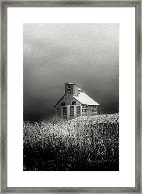 Cattle Feed For The Winter Framed Print by Marvin Spates