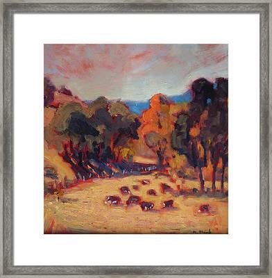 Cattle In October Framed Print