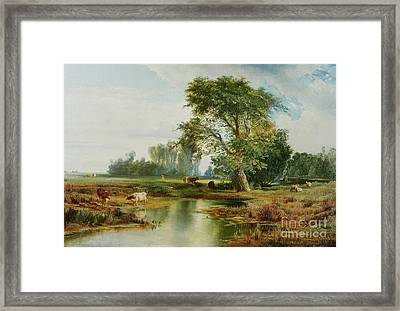 Cattle Watering Framed Print by Thomas Moran