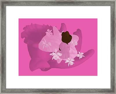 Cattleya Framed Print by Jason Sharpe