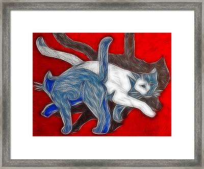 Catwalk Framed Print by Joachim G Pinkawa