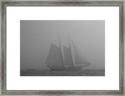 Caught In A Fog Framed Print