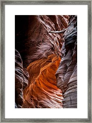 Caught In A Pinch Framed Print