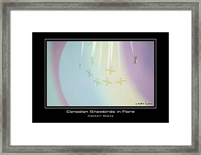 Caught In Flare Framed Print by Mathias Rousseau