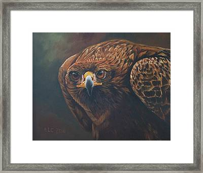 Caught In Sight Framed Print