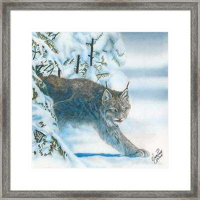 Caught In The Open Framed Print