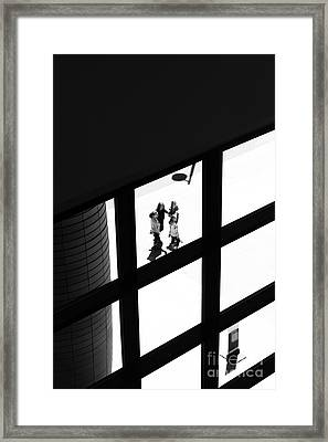 Caught In The Window Framed Print