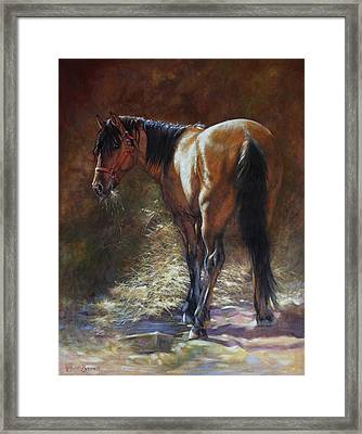 Caught With A Mouthful Framed Print by Harvie Brown