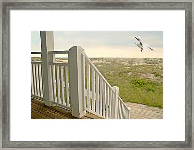 Caution To The Wind Framed Print