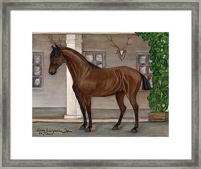 Cavalry Horse Framed Print by Anna Folkartanna Maciejewska-Dyba