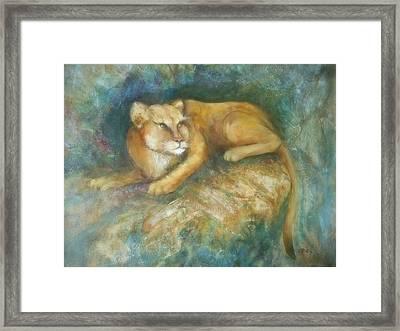 Cave Cat Framed Print
