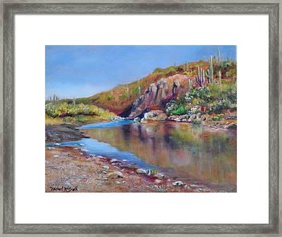 Cave Creek Pool Framed Print