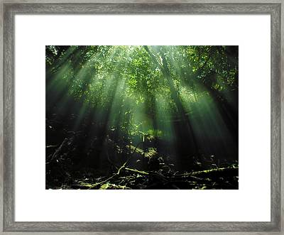 Cave Diving In Mexico Framed Print by Christine Till