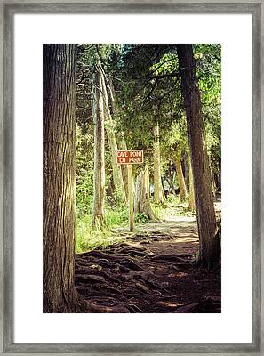 Framed Print featuring the photograph Cave Point Trails by Joel Witmeyer