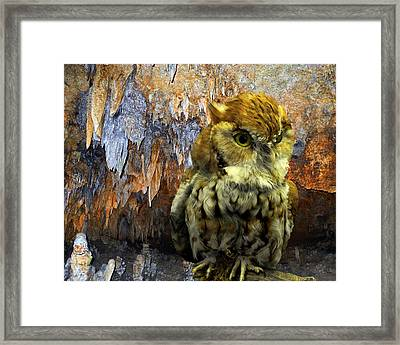 Cavern Watch Framed Print