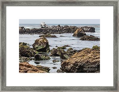 Cayucos Coast B3920 Framed Print by Stephen Parker