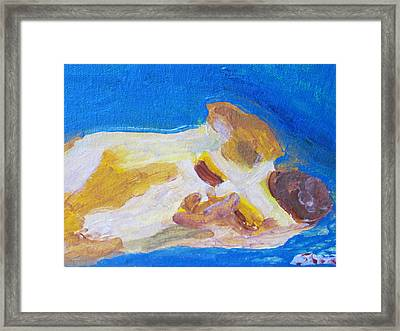 Cc The Cat Framed Print by Shea Holliman