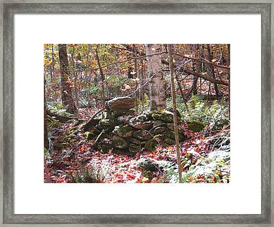 CCC Framed Print by Peter Williams