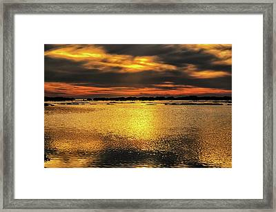 Framed Print featuring the photograph Ceader Key Florida  by Louis Ferreira