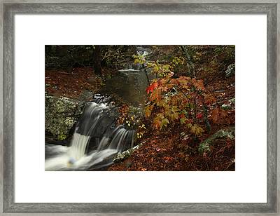 Framed Print featuring the photograph Cecil Cove Runoff by Michael Dougherty