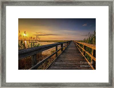 Cedar Beach Pier, Long Island New York Framed Print