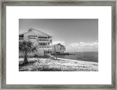 Framed Print featuring the photograph Cedar Cove by Howard Salmon