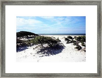 Cedar Island 3 Framed Print by Alan Hausenflock