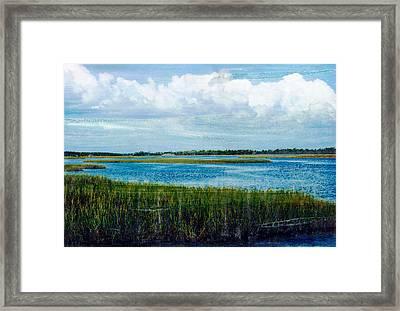 Cedar Key 2 Framed Print by Bob Senesac