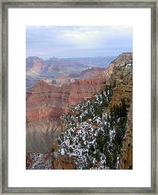 Cedar Ridge Grand Canyon Framed Print