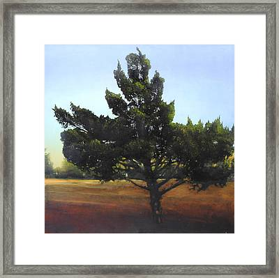 Framed Print featuring the painting Cedar Sold by Cap Pannell