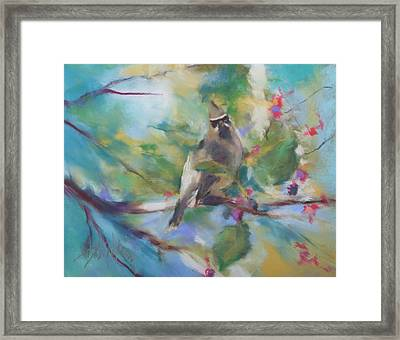 Cedar Wax Wing And Elderberries Framed Print
