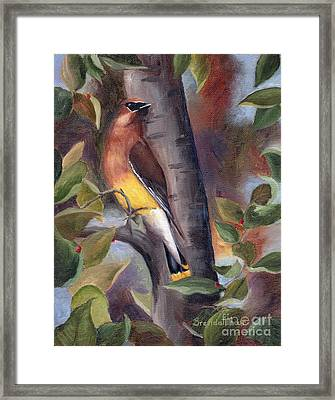 Framed Print featuring the painting Cedar Waxwing by Brenda Thour