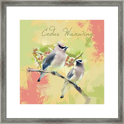 Framed Print featuring the photograph Cedar Waxwing Watercolor Photo by Heidi Hermes