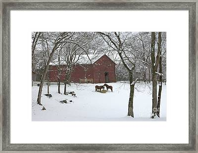 Cedarock Park In The Snow Framed Print by Benanne Stiens