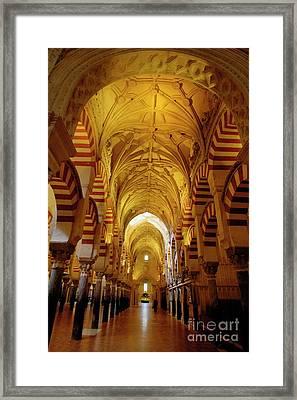 Ceilings Inside The Catedral De Cordoba Framed Print by Sami Sarkis