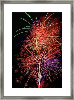 Celebrating Everything Framed Print