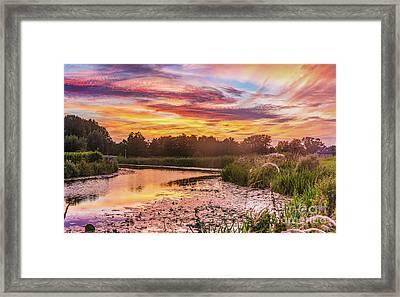 Celebrating Sky Framed Print