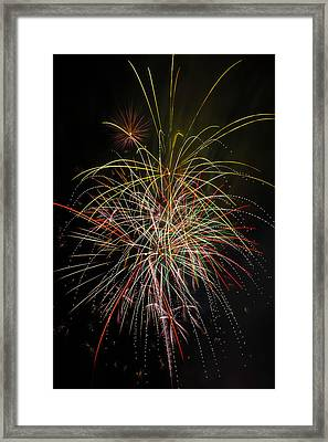 Celebrating The 4th Framed Print