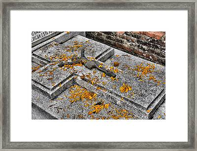 Celebrating The Day Of The Dead Framed Print by Jim Walls PhotoArtist