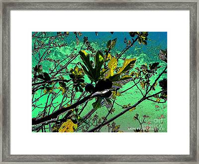 Celebrating The Spring 2 Framed Print by Don Pedro De Gracia
