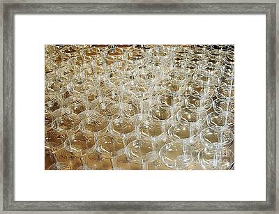 Celebration Framed Print by Clayton Bruster