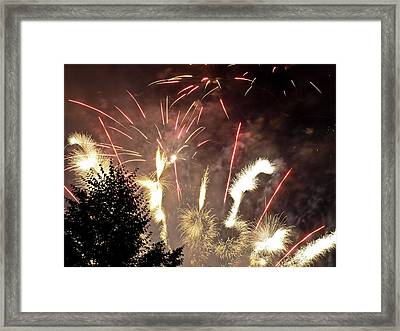 Celebration Framed Print by Jim DeLillo