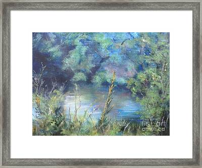 Celebration Of Solitude Framed Print by Mary Lynne Powers