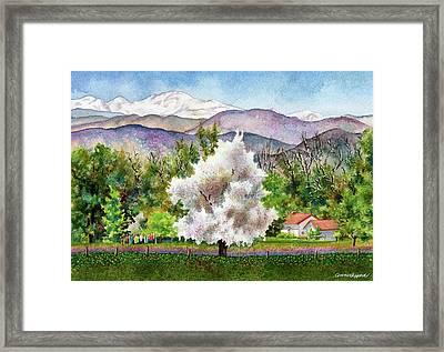 Celeste's Farm Framed Print by Anne Gifford