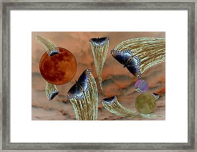 Celestial Butterflies Framed Print
