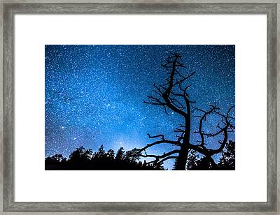 Celestial Stellar Universe Framed Print by James BO  Insogna