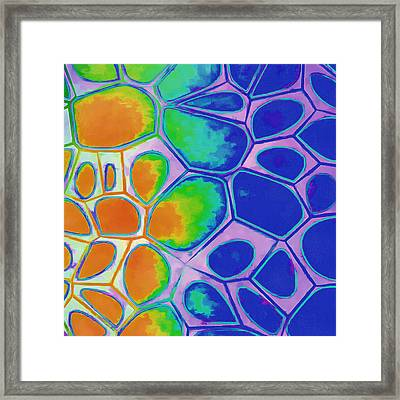 Cell Abstract 2 Framed Print by Edward Fielding