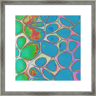 Cells Abstract Three Framed Print by Edward Fielding