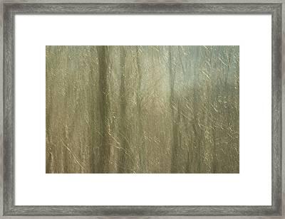 Celophane Framed Print